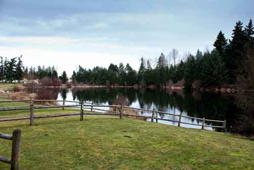 The Go-To Guide to Puyallup's Favorite Parks